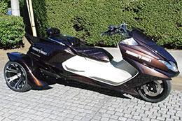 Boltoora-SS YAMAHA MAXAM 250