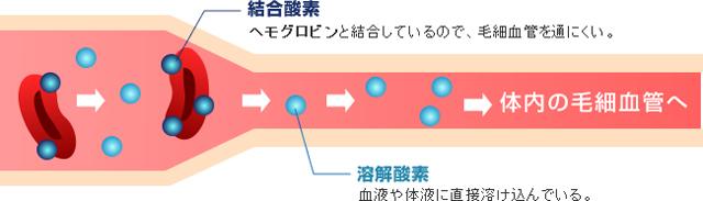 結合型酸素と溶解型酸素