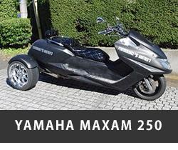 YAMAHA MAXAM250
